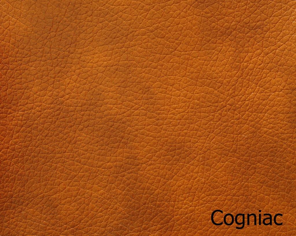 Cogniac 1-min