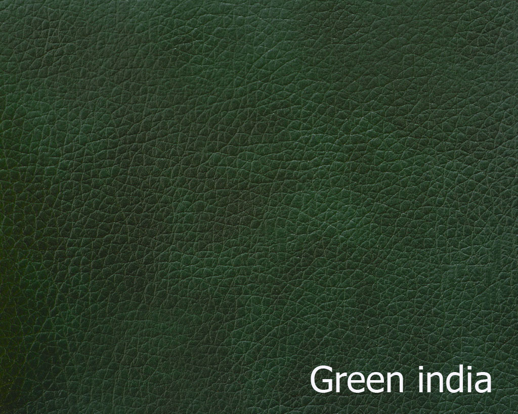 green-india1-min